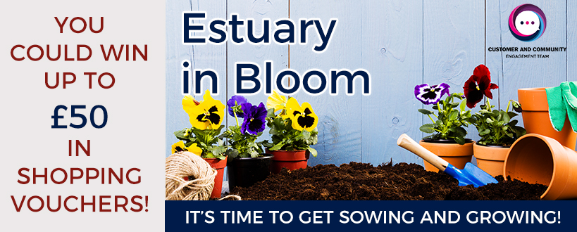 Estuary In Bloom 2019