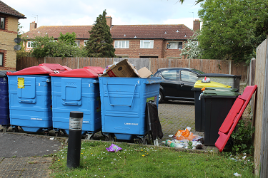 Lushes Court - The Bin Area with litter overflowing before improvements were made.