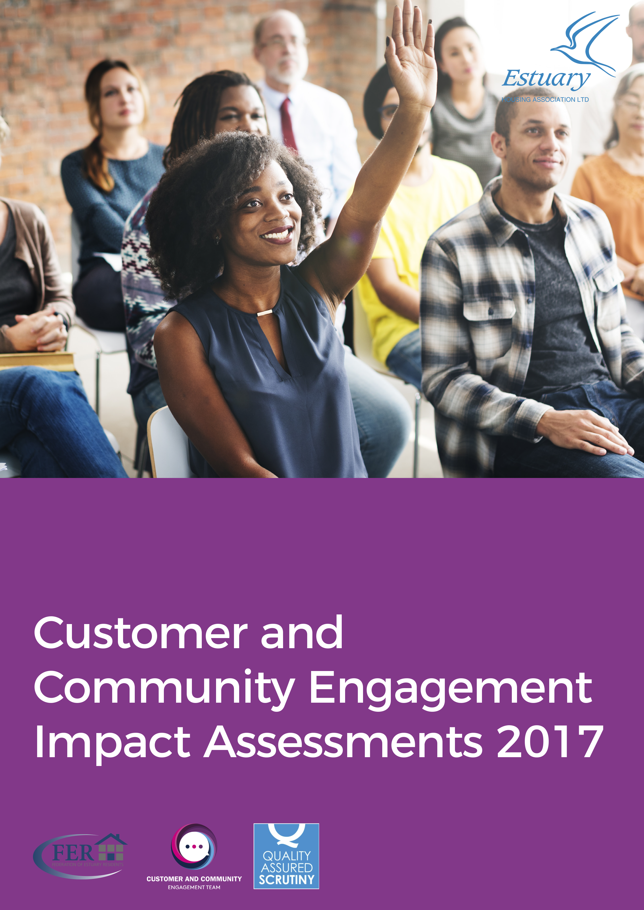 Download the Customer Engagement Impact Assessment 2017